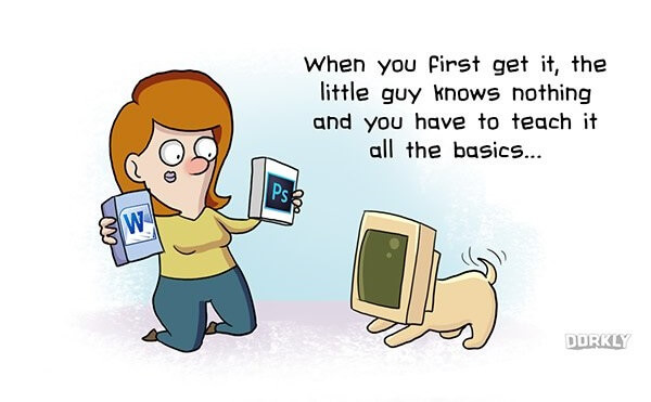 dorkly-own-pc-like-own-dog_small